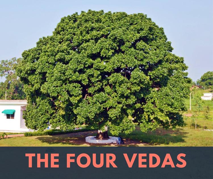 Die vier Veden