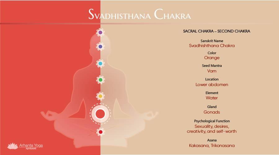 Svadhishthana Chakra - Sacral Chakra Infographic